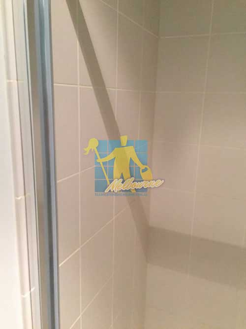 cleaned bathroom porcelain wall tiles with cleaned white grout lines