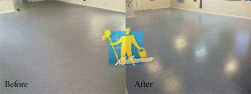 Before And After Carpet Cleaning Images